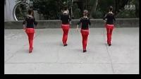 广场舞 步子舞二十四步 - 广场舞视频