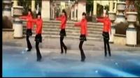 广场舞 天天把哥唱 - 广场舞视频