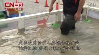 遇洪水时紧急避难技巧——国家应急广播