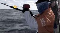 海钓视频2
