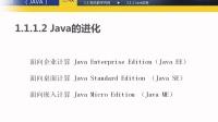 1.1.1.2 Java的进化 《软件测试员(java)三级》