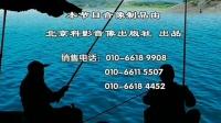 玉米 海杆钓鱼 黑坑钓鲤鱼饵料