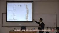 《颈椎功能解剖》 颈椎的活动度问题