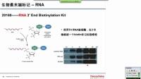 【网络讲座】蛋白核酸相互作用研究方案与技巧