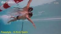 自由泳6次腿的训练秘籍