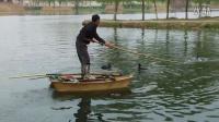 逛泉河岸边   看鸬鹚抓鱼   真的很棒啊