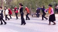 紫竹院广场舞——贝加尔湖畔1