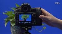 尼康 D810 数码单反操作教程——视频拍摄(跟我学摄影)