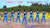 沅陵燕子广场舞《美丽大中国》(原创舞附口令分解)