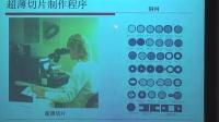 电子显微镜技术在生物医学中的应用(2)--西安交通大学核心设备论坛
