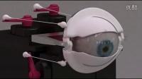 Blender animatronic eye servo placement frontview