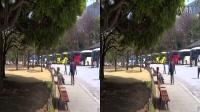 东京一日 【日本旅游一】3D版