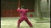 张东武陈式太极拳老架一路背向全套演练 _标清