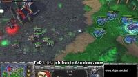 【TED出品】中韩对抗赛团队赛 第一场 TeD VS Sweet TR