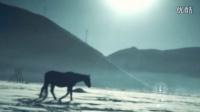 QS150215[晴狮作品]出彩中国人第二季_内心篇_完整版