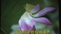 空海法師-證道歌精髓1-3(幻燈片_除妄求真)