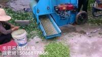 农户使用毛豆采摘机采收毛豆荚现场