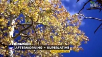 09. Aftermorning-Superlative (Dave Cold Remix)【IND Music】