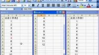 Excel教程 03-09 并排不同数据内 ...
