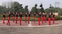 2015王广成广场舞小苹果分解动作 广场舞蹈视频大全