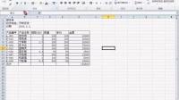 03、电子表格的基本建立-输入数 ...
