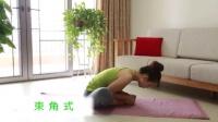 国内第一套全面、瑜伽初级教程在家练全套