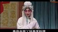 潘杨讼选编