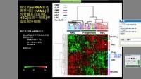 【网络讲座】实时荧光定量PCR技术最新进展及临床诊断的应用与开发