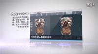 三维互动人体解剖系统