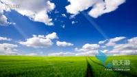 7287清新鸟语花香自然环保绿色草地草原鲜花植物小道动画素材