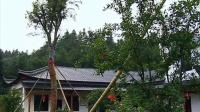 """0602我市提出森林休闲养生业概念 """"激活""""绿水青山"""