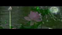 荷塘月色-凤凰传奇