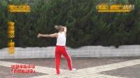 《丽江三步曲》背面教学潇洒哥演示乾县潇洒广场舞系列