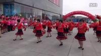 黄骅市信誉楼舞蹈队表演广场舞【张灯结彩】