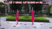雨丝广场舞青花梦
