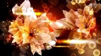 A92高清动态唯美花朵婚庆LED大屏幕舞台视频婚礼晚会背景演出节目素材VJ