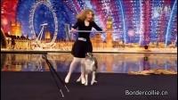 [边牧跳舞视频]边境牧羊犬:2010年英国达人秀一只与主人神交流的边牧
