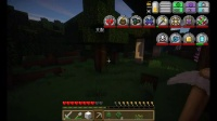 【Minecraft 虚无世界2生存】 第一期