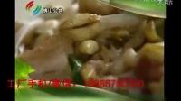 客服18866790200花生芽 特色花生芽生产技术 花生机械 花生芽怎么种 花生芽吃法 花生芽技术