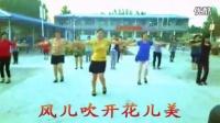 凤子广场舞自在美-显歌词_标清