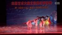 第三届未来星工场全国艺术大赛 北京选拔赛 笛中花