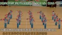 安徽省枞阳县举行第七个全民健身日体育健身项目展示(上)
