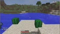 《我的世界》1.9原版生存 第二期 史上最穷的村庄