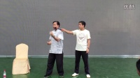 2015朱天才高级拳师培训班 (接着讲青龙出水)