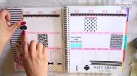 Plan With Me- Kate Spade风格的Erin Condren手帐本周计划页剪贴装饰(文具)