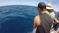 太平洋圣地亚哥海钓视频记录