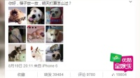 王珞丹和张嘉佳被曝已分手 当初恋情见光死 150829