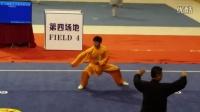 国际冠军薛良兴2015.8焦作(陈氏56式拳第一名)
