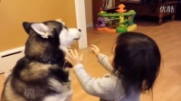 宝贝和萌宠之间的满满爱意 搞笑可爱的宝贝视频104