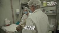动物实验:探秘活体猴子实验室
